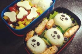 Рецепт бенто №48. Рисовые панды, жареный лосось, салат и яйца-зайки