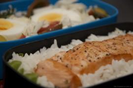 Рецепт бенто №83. Жареный лосось с рисом, яйцо, овощной салат