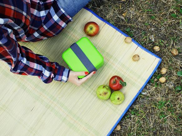 Идём на пикник вместе с ланч боксом monbento square